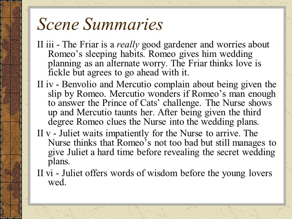 Scene Summaries