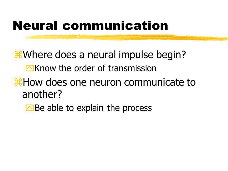 Neural communication Where does a neural impulse begin