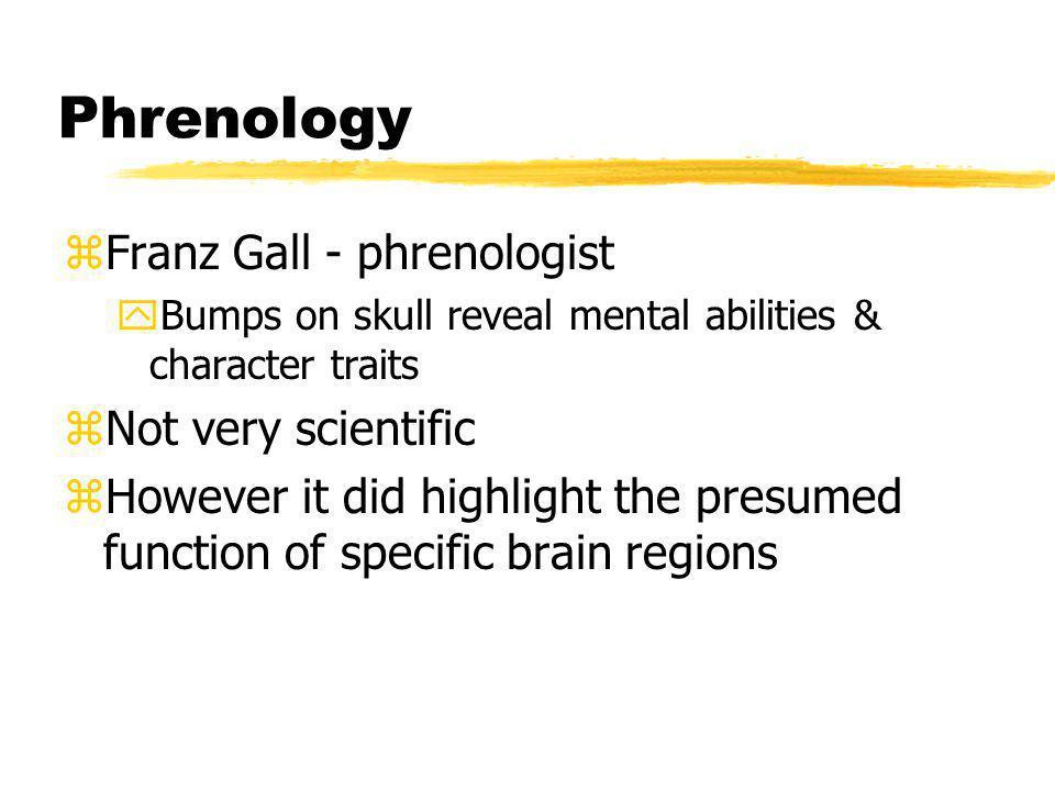 Phrenology Franz Gall - phrenologist Not very scientific