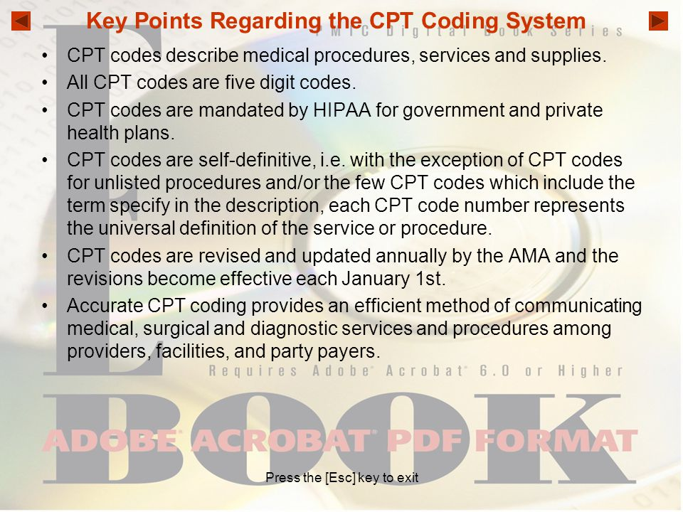 Key Points Regarding the CPT Coding System