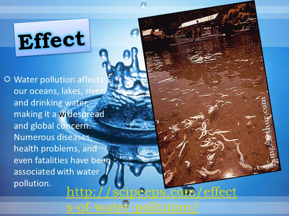 Effect http://scipeeps.com/effects-of-water-pollution/