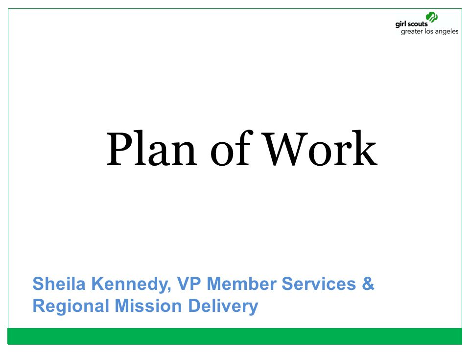 Plan of Work Sheila Kennedy, VP Member Services & Regional Mission Delivery