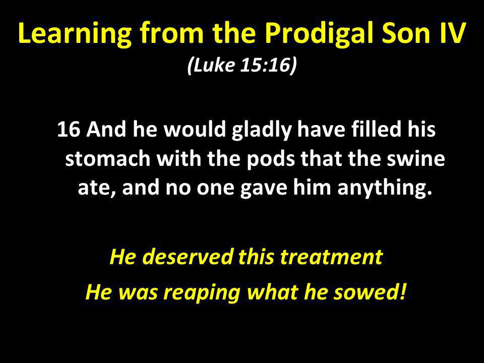 Learning from the Prodigal Son IV (Luke 15:16)