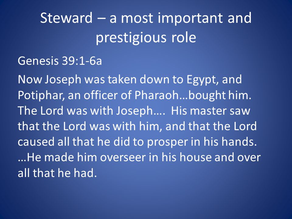 Steward – a most important and prestigious role
