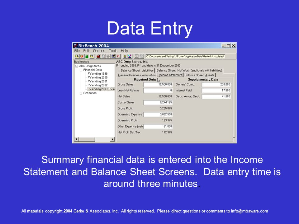 Data Entry Summary financial data is entered into the Income Statement and Balance Sheet Screens. Data entry time is around three minutes.