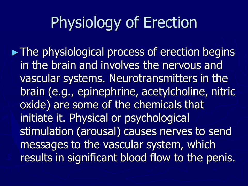 Physiology of Erection
