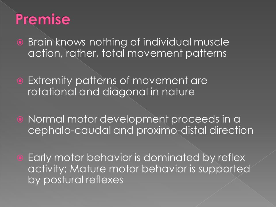 Premise Brain knows nothing of individual muscle action, rather, total movement patterns.