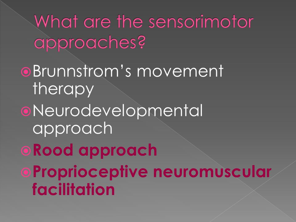 What are the sensorimotor approaches