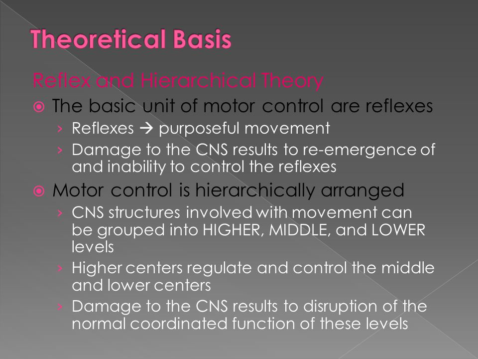 Theoretical Basis Reflex and Hierarchical Theory