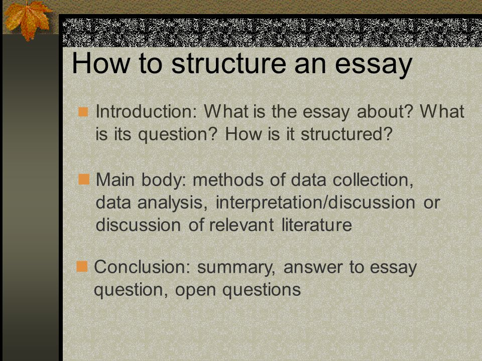 good introduction discussion essay