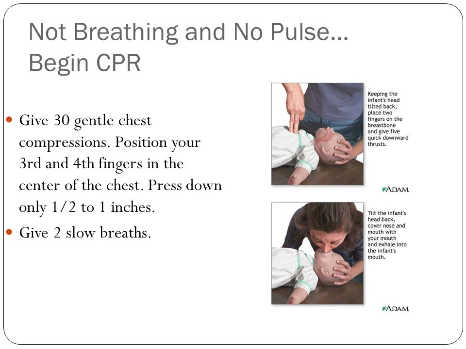 Not Breathing and No Pulse… Begin CPR