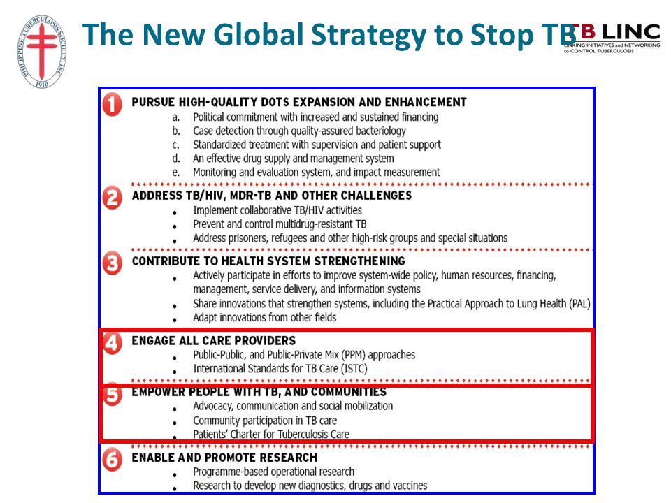 The New Global Strategy to Stop TB