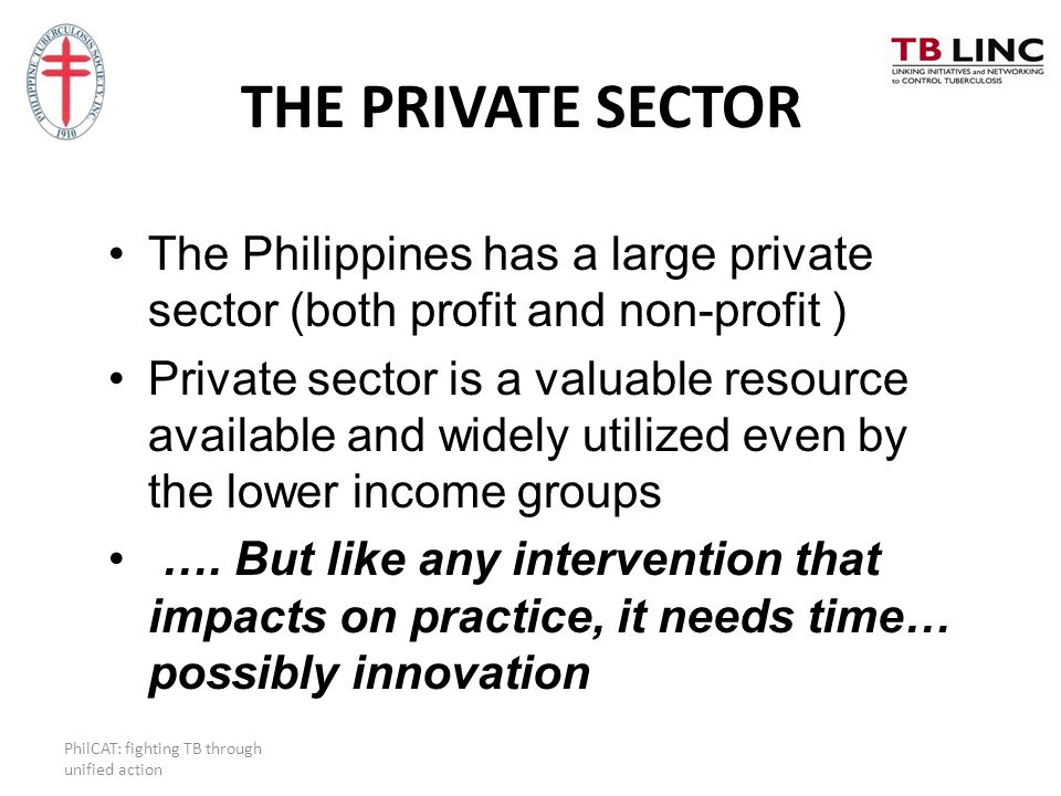 THE PRIVATE SECTOR The Philippines has a large private sector (both profit and non-profit )