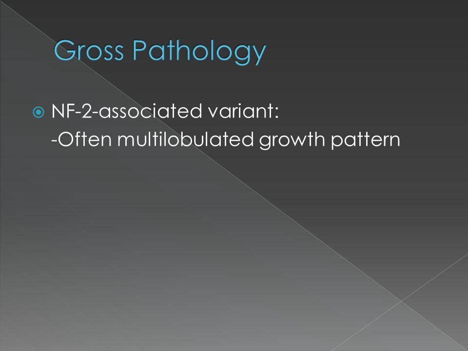Gross Pathology NF-2-associated variant: