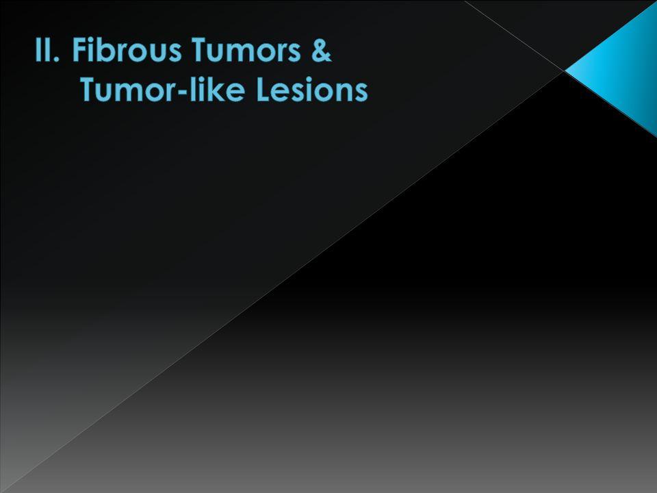 II. Fibrous Tumors & Tumor-like Lesions