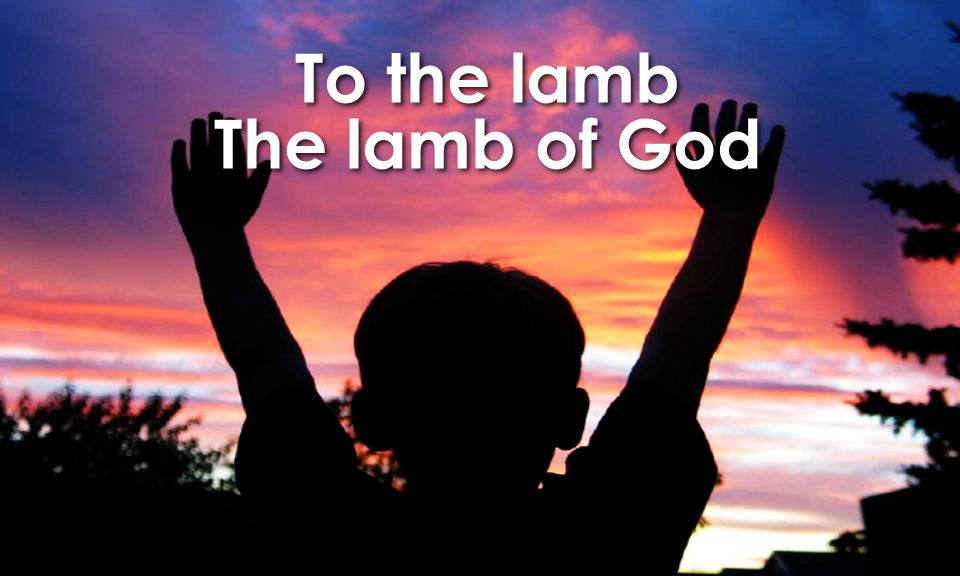 To the lamb The lamb of God