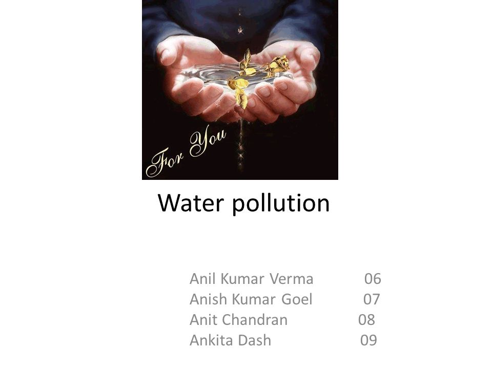 Water pollution Anil Kumar Verma 06 Anish Kumar Goel 07