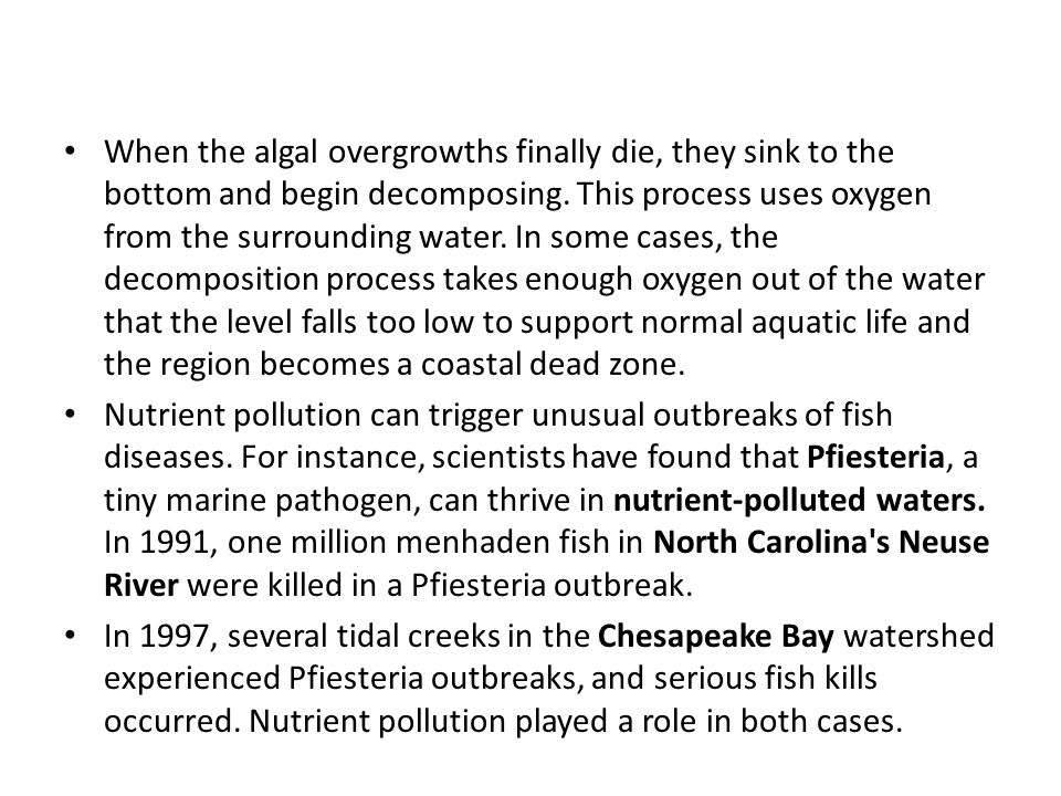 When the algal overgrowths finally die, they sink to the bottom and begin decomposing. This process uses oxygen from the surrounding water. In some cases, the decomposition process takes enough oxygen out of the water that the level falls too low to support normal aquatic life and the region becomes a coastal dead zone.
