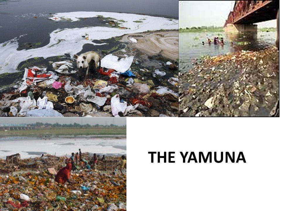 THE YAMUNA
