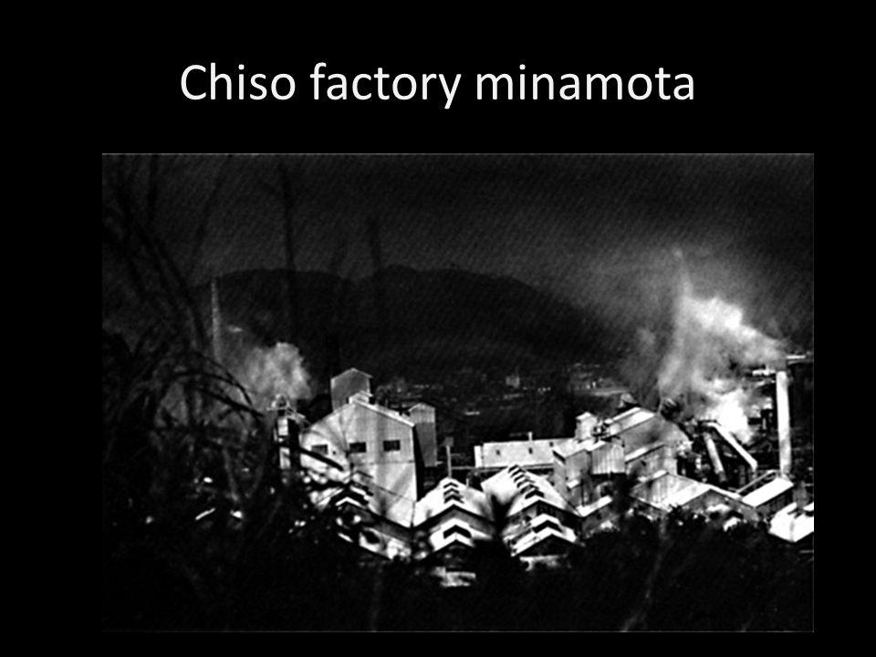 Chiso factory minamota