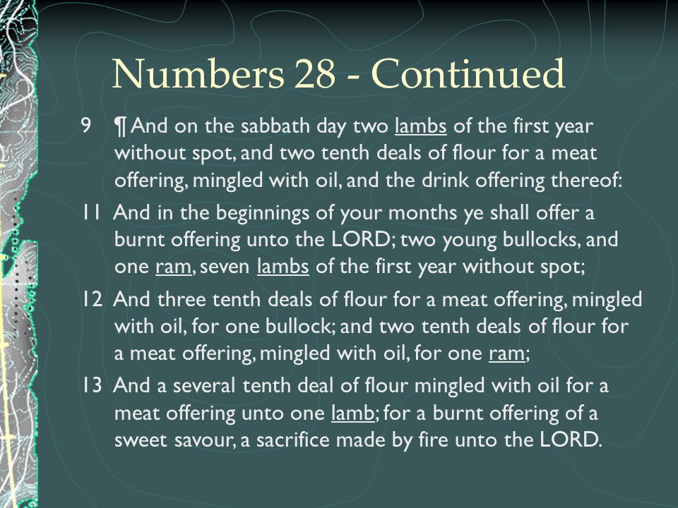 Numbers 28 - Continued