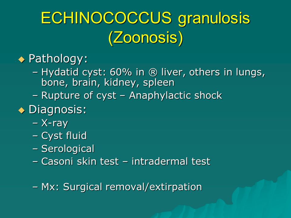ECHINOCOCCUS granulosis (Zoonosis)