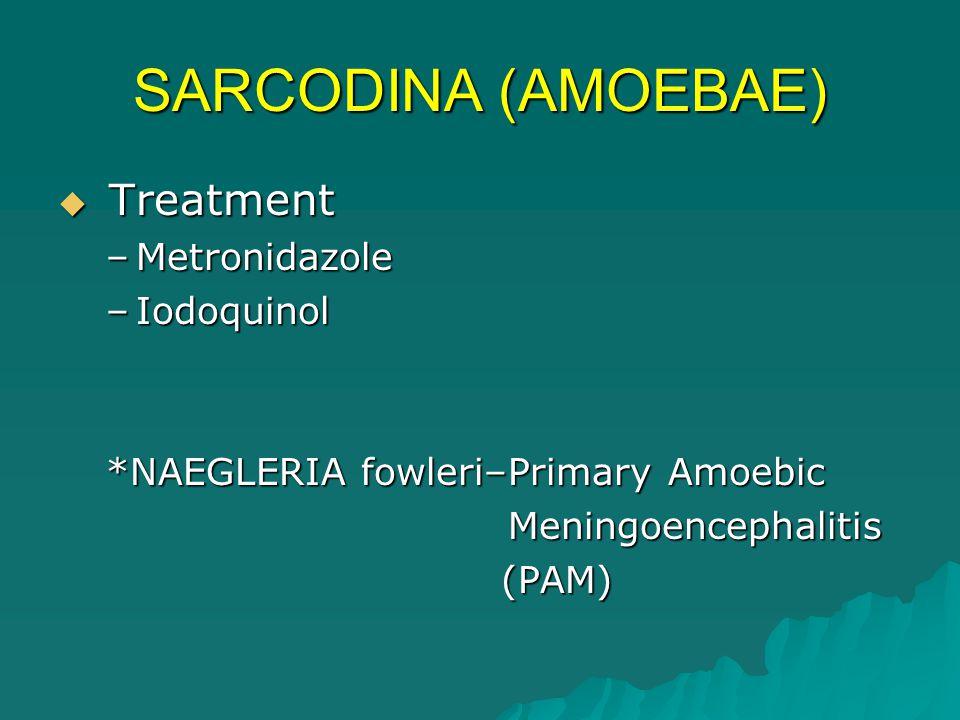 SARCODINA (AMOEBAE) Treatment Metronidazole Iodoquinol