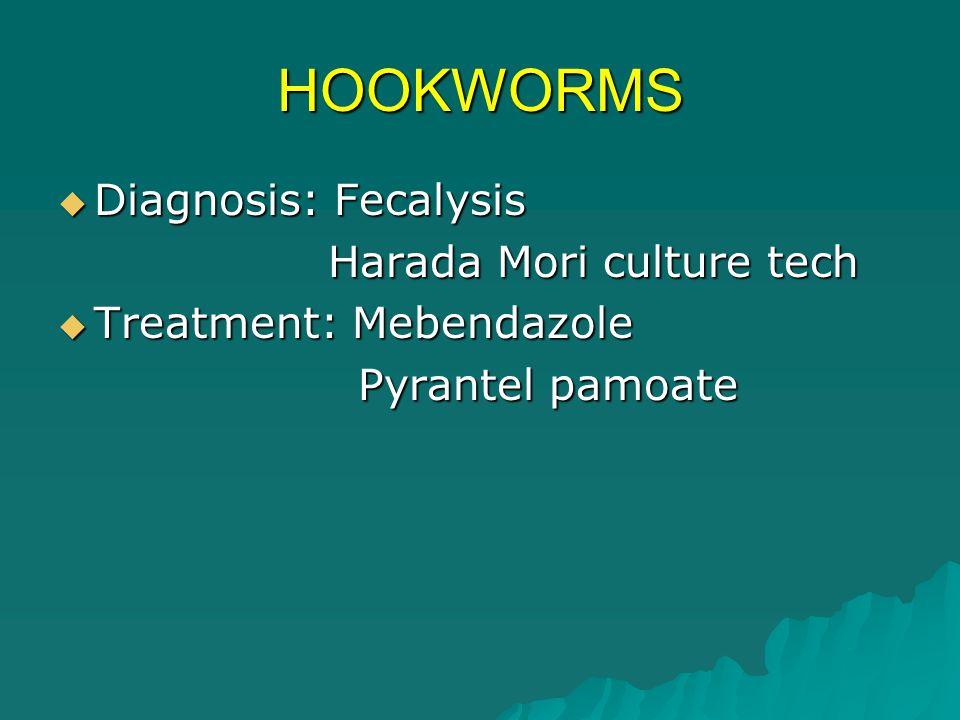 HOOKWORMS Diagnosis: Fecalysis Harada Mori culture tech