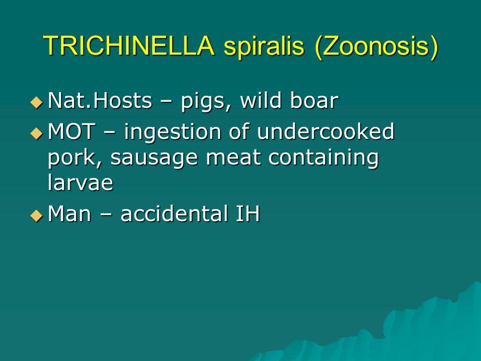 TRICHINELLA spiralis (Zoonosis)