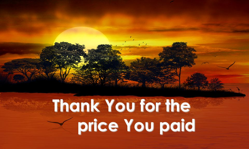 Thank You for the price You paid