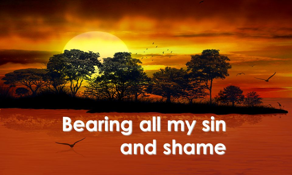 Bearing all my sin and shame