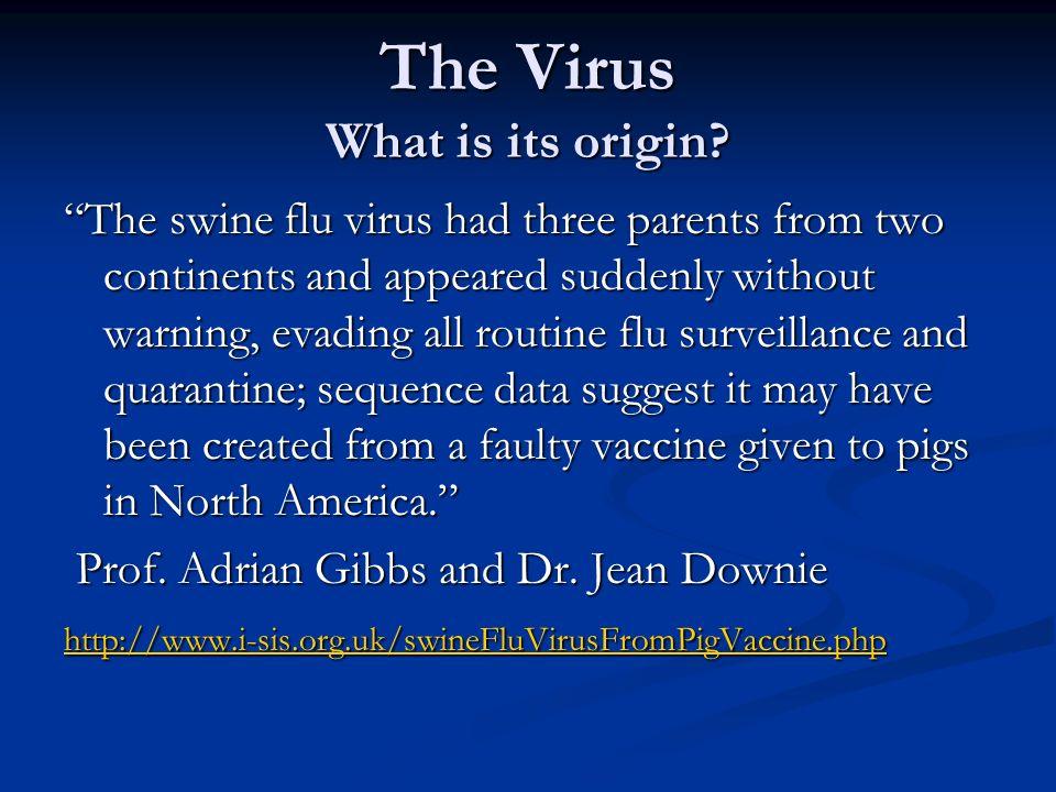 The Virus What is its origin