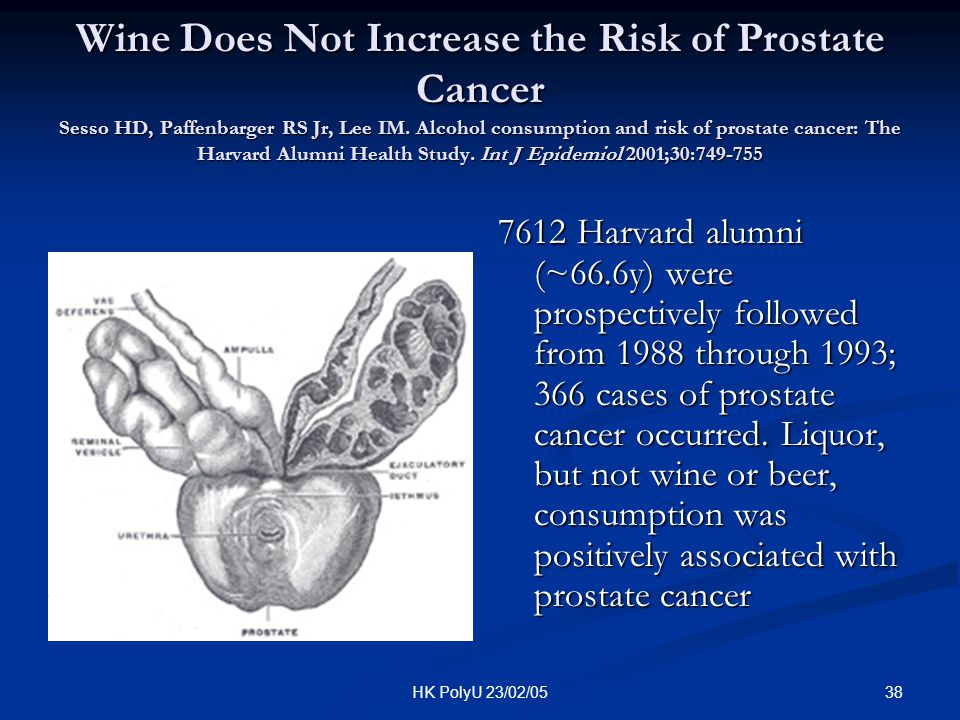 Wine Does Not Increase the Risk of Prostate Cancer Sesso HD, Paffenbarger RS Jr, Lee IM. Alcohol consumption and risk of prostate cancer: The Harvard Alumni Health Study. Int J Epidemiol 2001;30:749-755