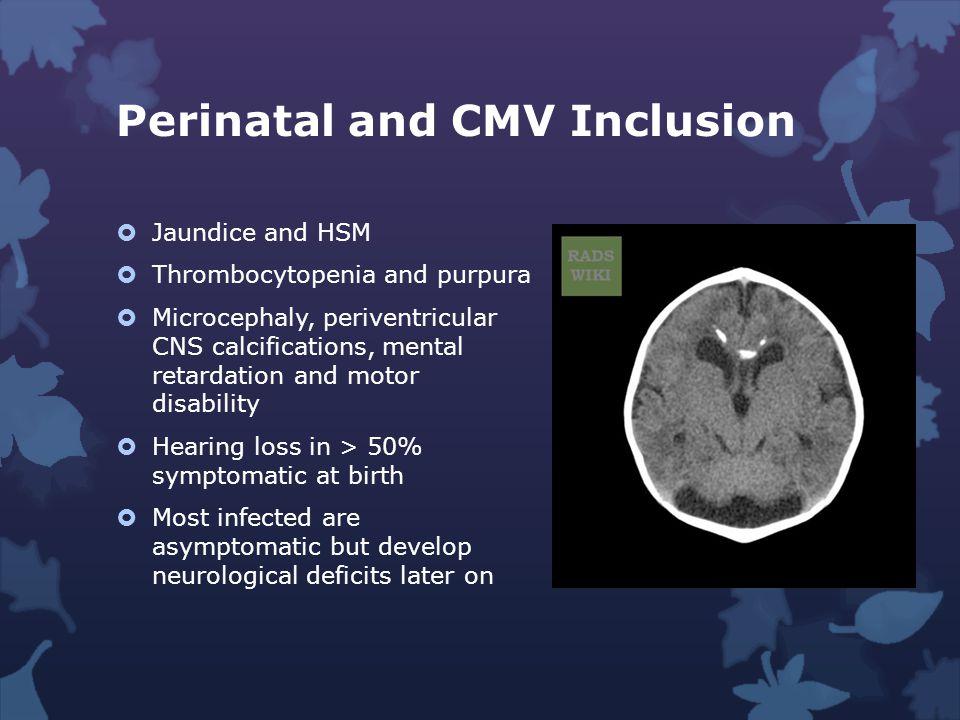 Perinatal and CMV Inclusion