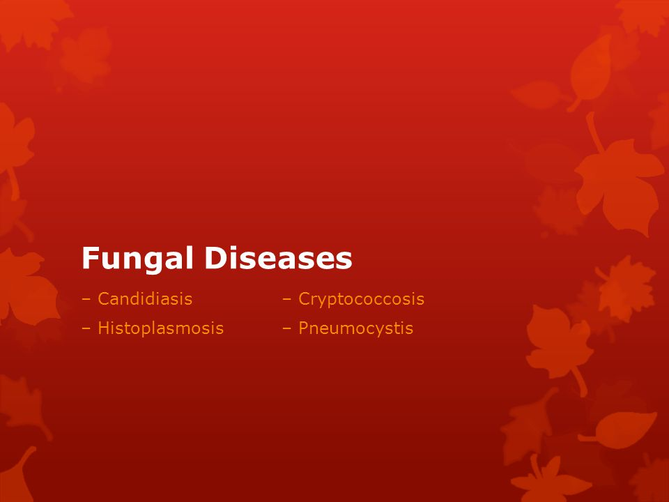 Fungal Diseases – Candidiasis – Cryptococcosis
