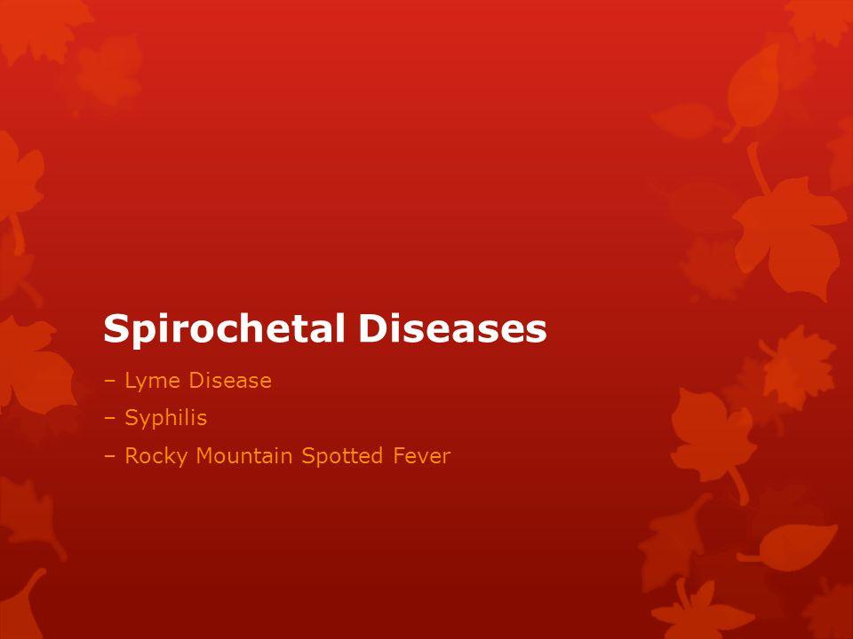 Spirochetal Diseases – Lyme Disease – Syphilis