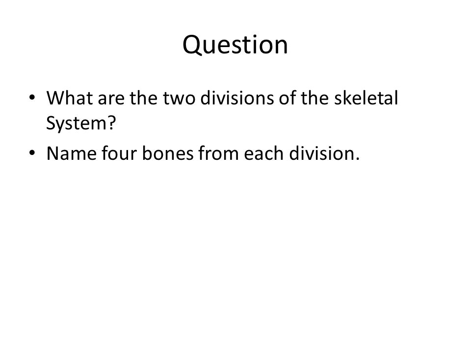 Question What are the two divisions of the skeletal System