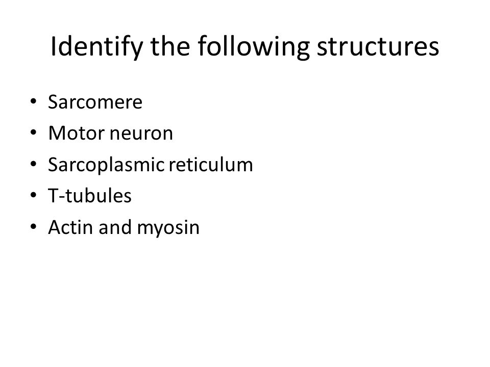 Identify the following structures