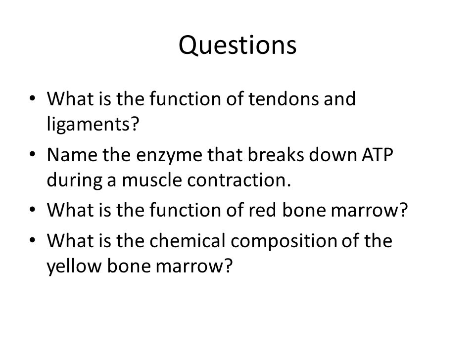 Questions What is the function of tendons and ligaments
