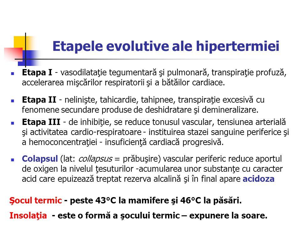 Etapele evolutive ale hipertermiei
