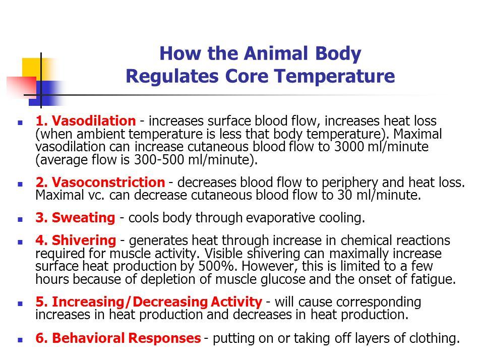 How the Animal Body Regulates Core Temperature