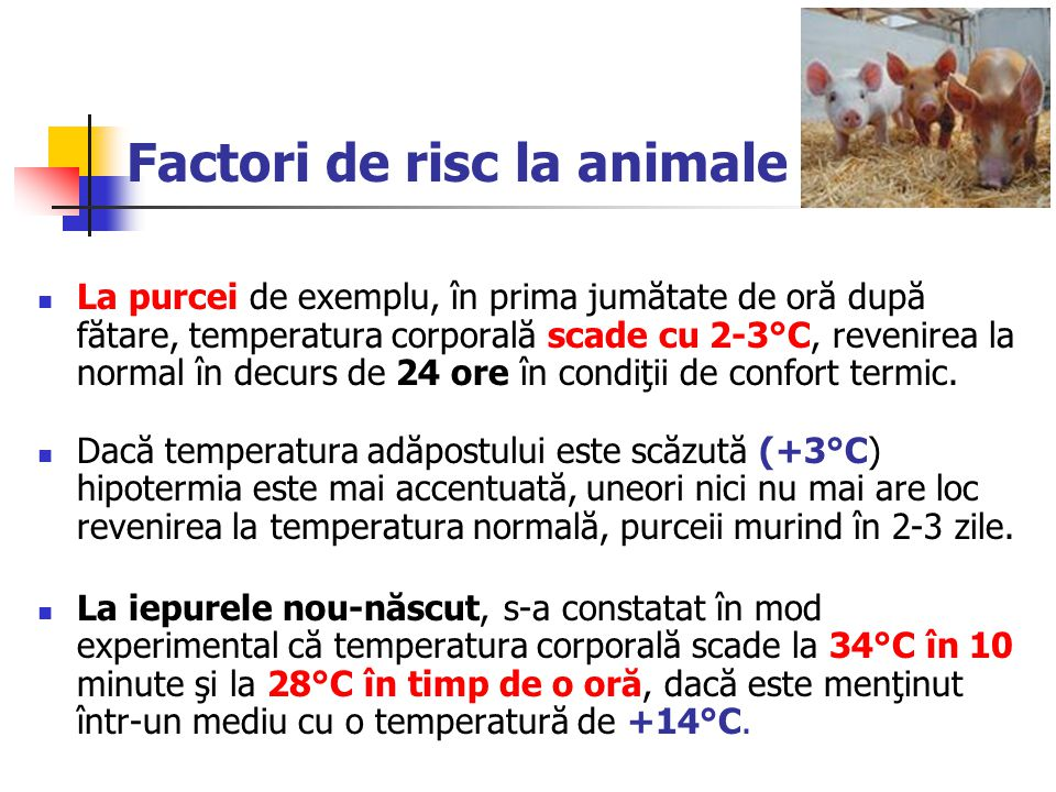 Factori de risc la animale