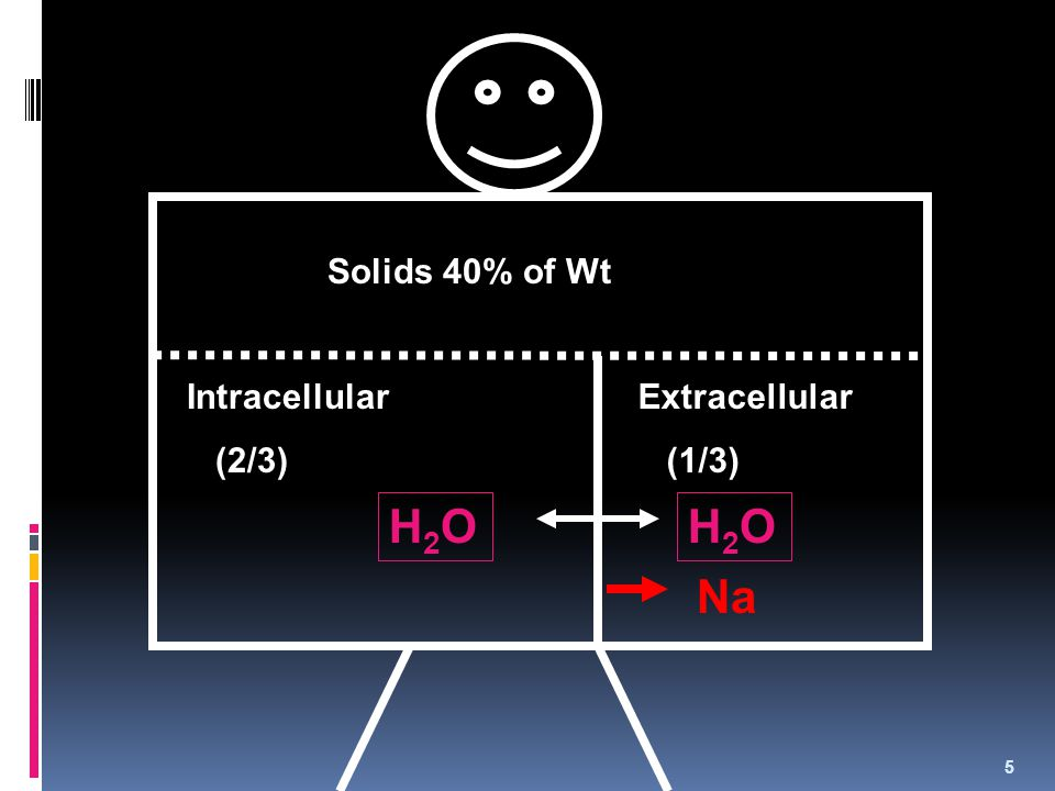 H2O H2O Na Solids 40% of Wt Intracellular (2/3) Extracellular (1/3)