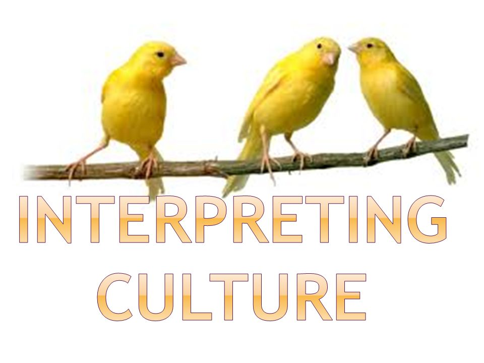 Interpreting Culture