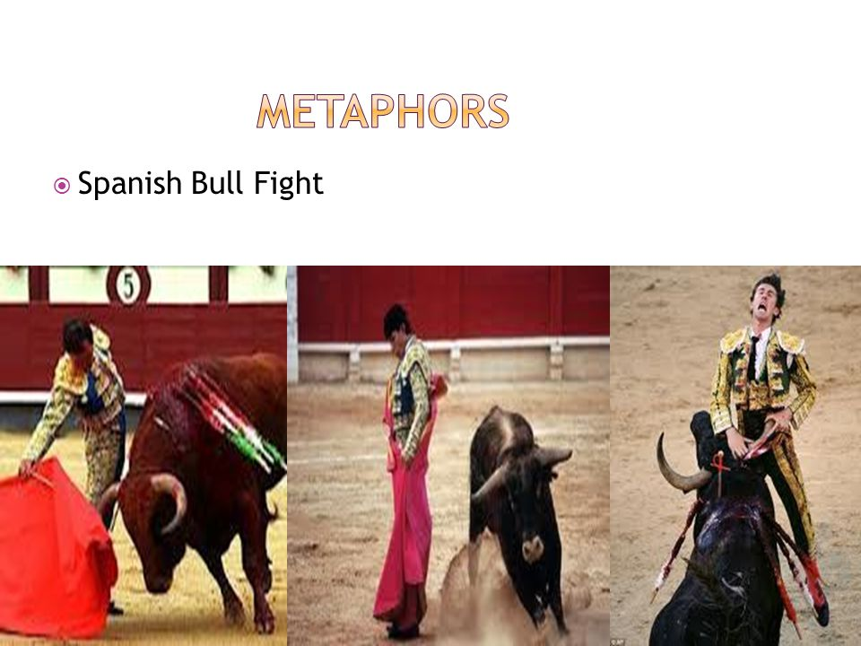 Metaphors Spanish Bull Fight