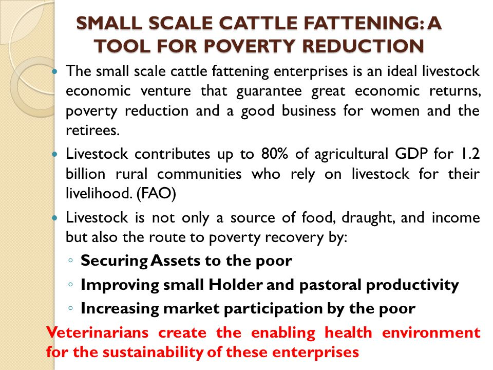 SMALL SCALE CATTLE FATTENING: A TOOL FOR POVERTY REDUCTION