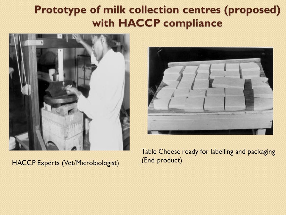 Prototype of milk collection centres (proposed) with HACCP compliance