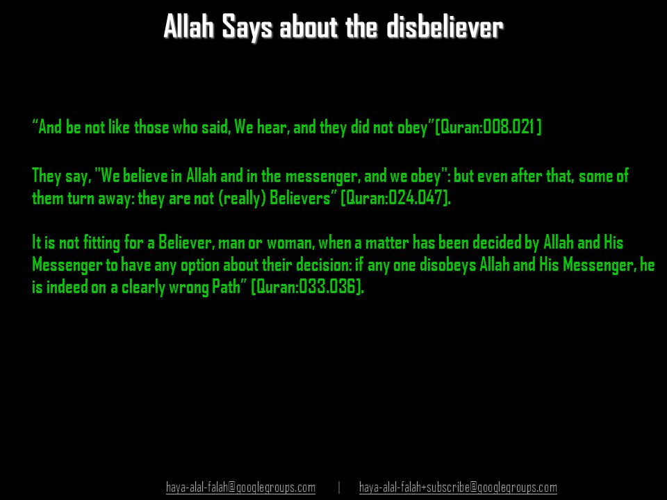 Allah Says about the disbeliever