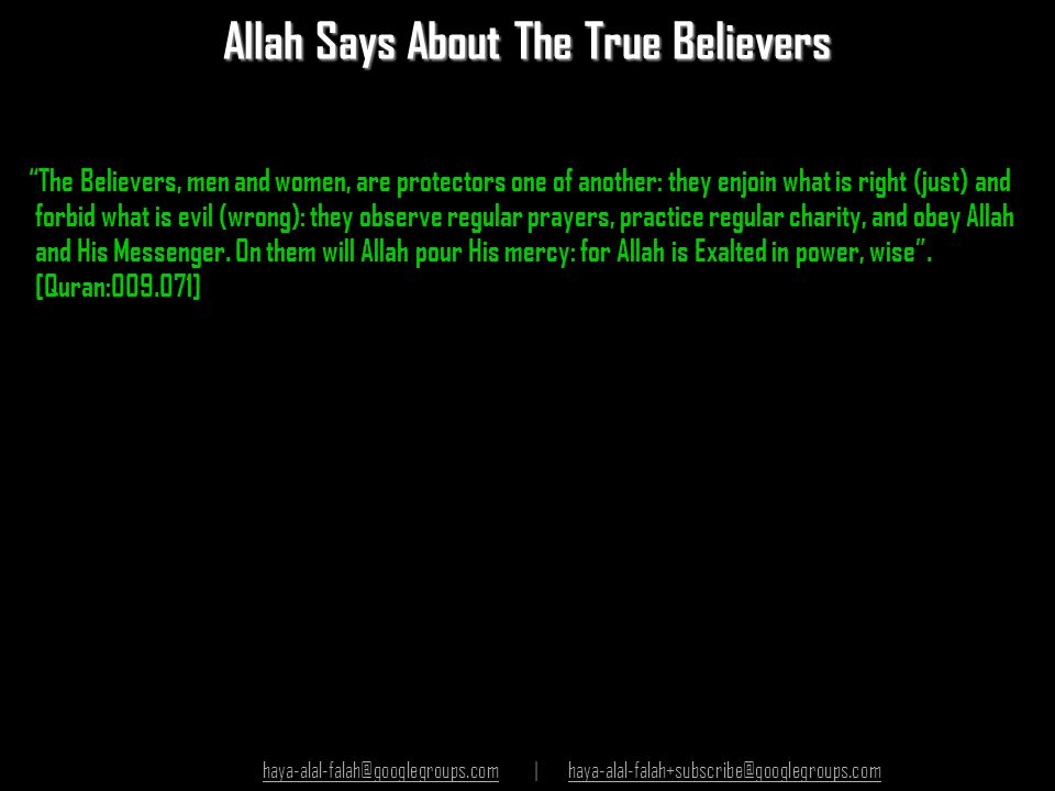 Allah Says About The True Believers
