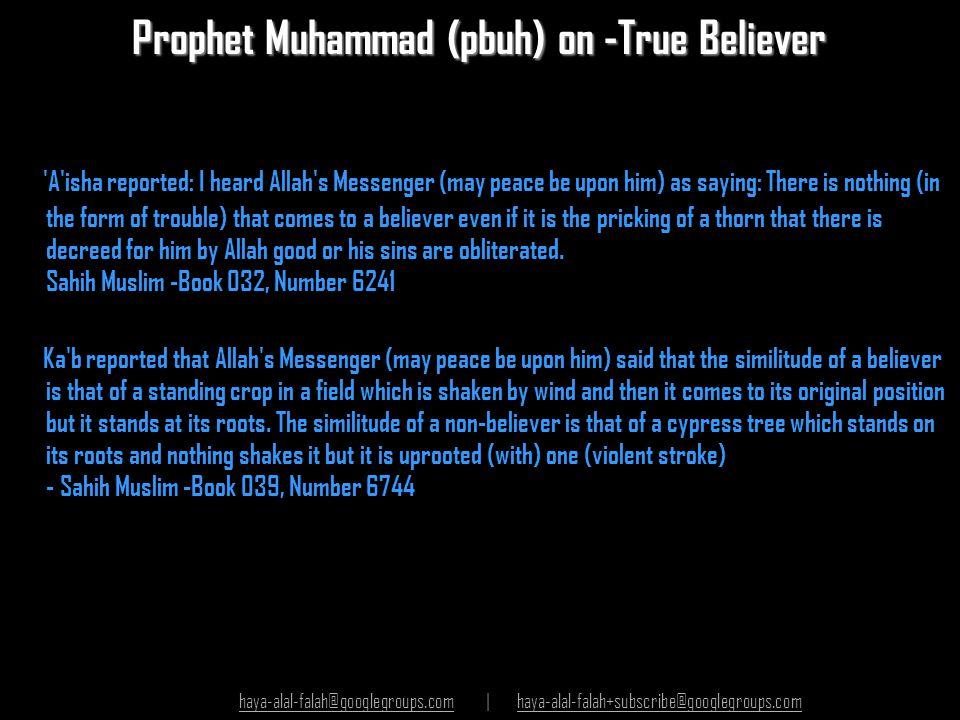 Prophet Muhammad (pbuh) on -True Believer